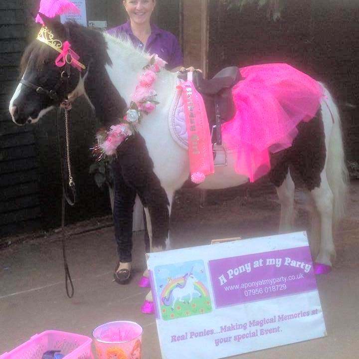 pony at my party pony rides at your party essex pony at my party